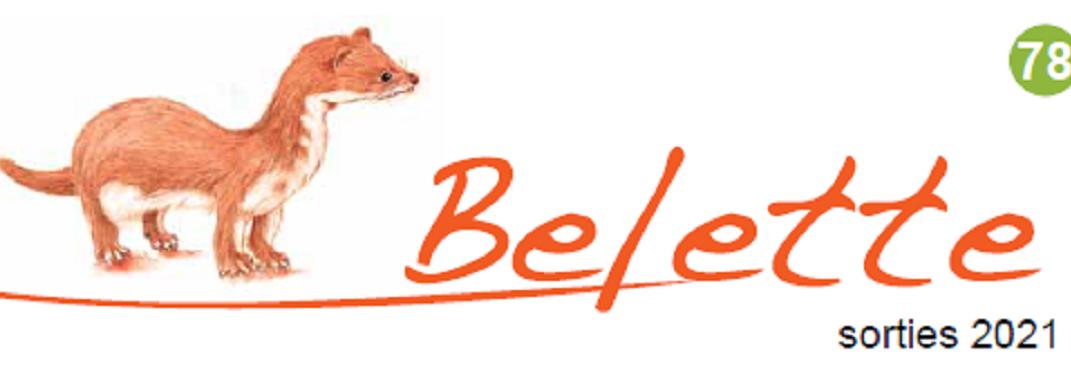 La Belette n°78 : Reprise des sorties Coscinat !